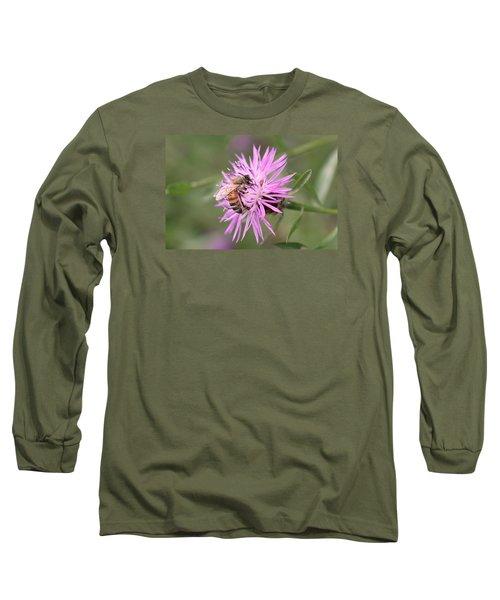 Honeybee On Ironweed Long Sleeve T-Shirt by Lucinda VanVleck