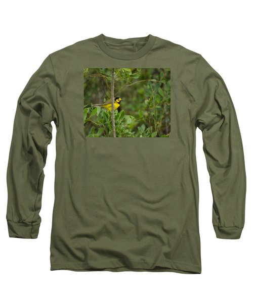 Hooded Warbler Long Sleeve T-Shirt