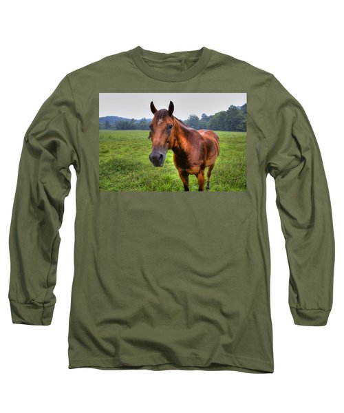 Horse In A Field Long Sleeve T-Shirt by Jonny D