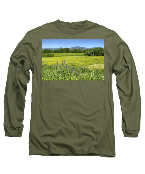 Horse In Buttercup Field Long Sleeve T-Shirt
