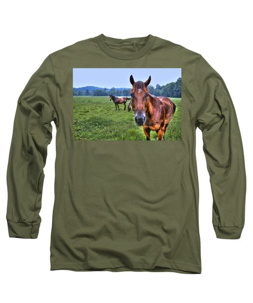 Long Sleeve T-Shirt featuring the photograph Horses In A Field by Jonny D