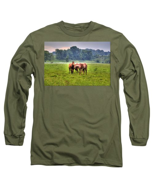Long Sleeve T-Shirt featuring the photograph Horses Socialize by Jonny D