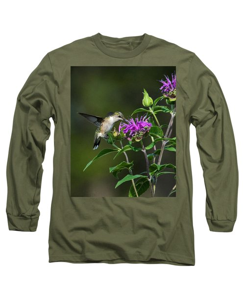Hummer On Bee Balm Long Sleeve T-Shirt