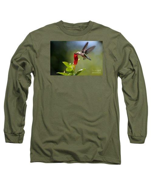 Hummingbird Dipping Long Sleeve T-Shirt by Debbie Green