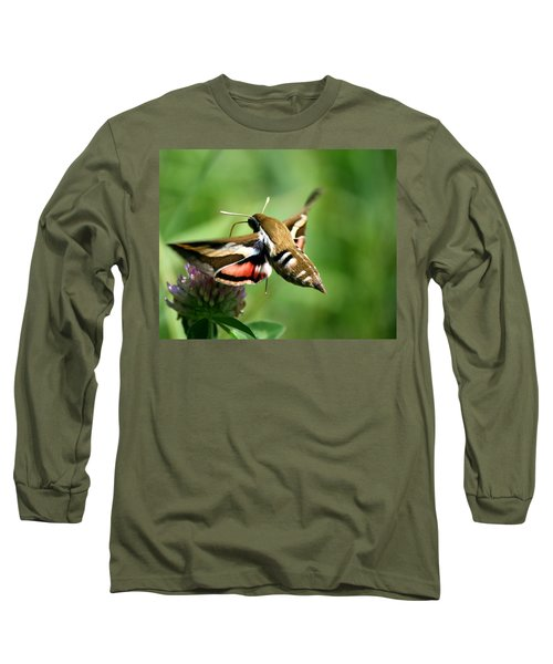 Hummingbird Moth From Behind Long Sleeve T-Shirt
