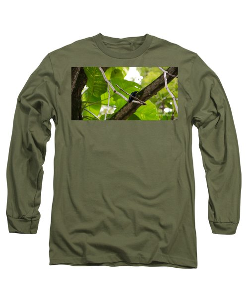 Hummingbird Out On A Limb Long Sleeve T-Shirt
