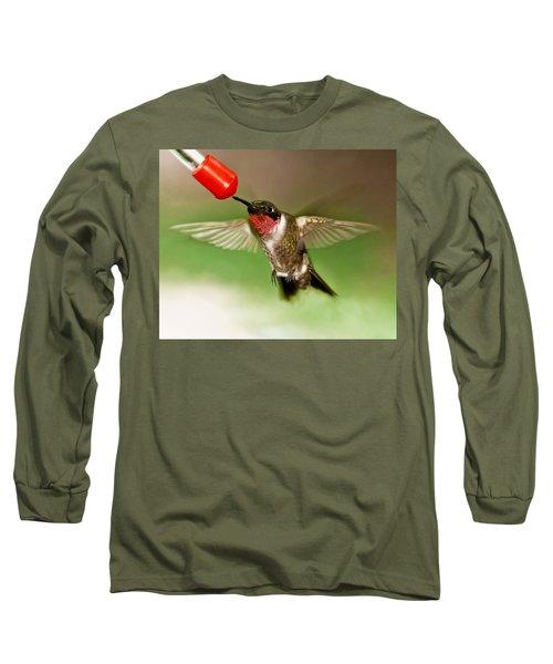 Hummingbird Long Sleeve T-Shirt by Robert L Jackson