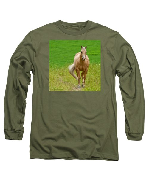 In The Meadow Long Sleeve T-Shirt by Torbjorn Swenelius