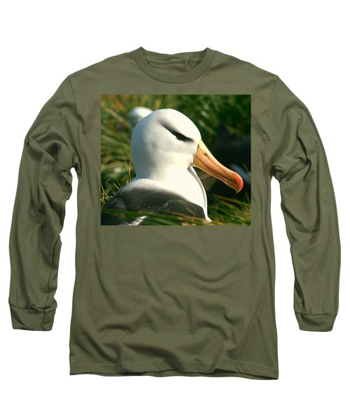 Long Sleeve T-Shirt featuring the photograph In Waiting by Amanda Stadther