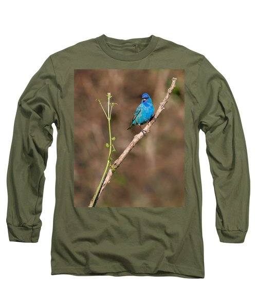 Indigo Bunting Portrait Long Sleeve T-Shirt by Bill Wakeley