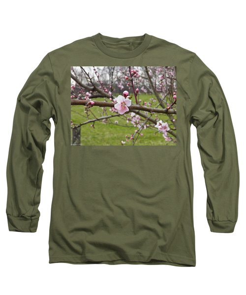 Just Peachy 3 Long Sleeve T-Shirt by Nick Kirby