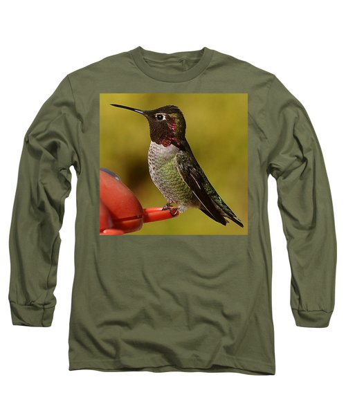 Long Sleeve T-Shirt featuring the photograph Juvenile Male Anna by Jay Milo