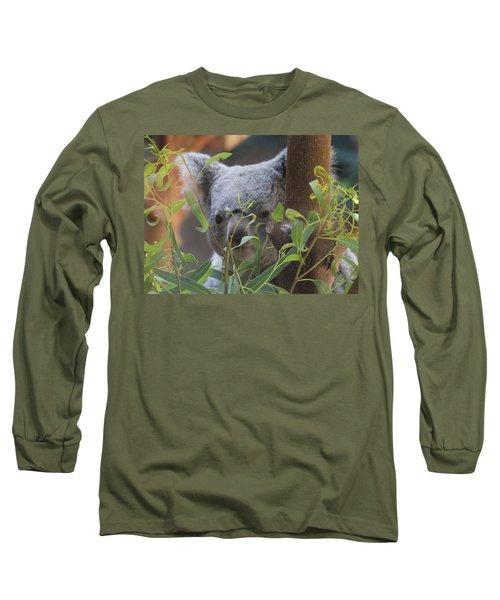 Koala Bear  Long Sleeve T-Shirt by Dan Sproul