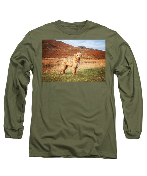 Labradoodle Puppy Long Sleeve T-Shirt