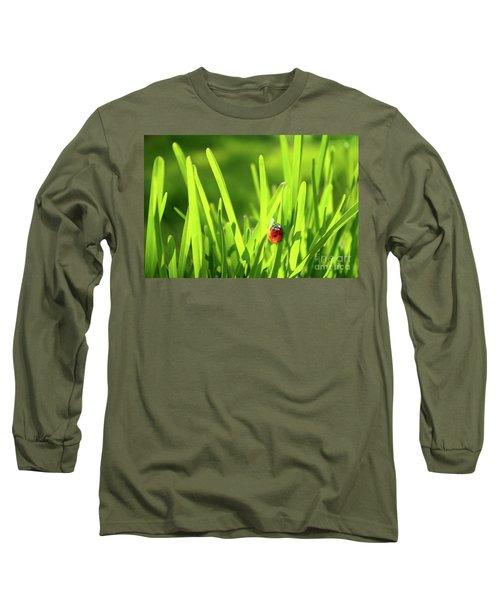 Ladybug In Grass Long Sleeve T-Shirt