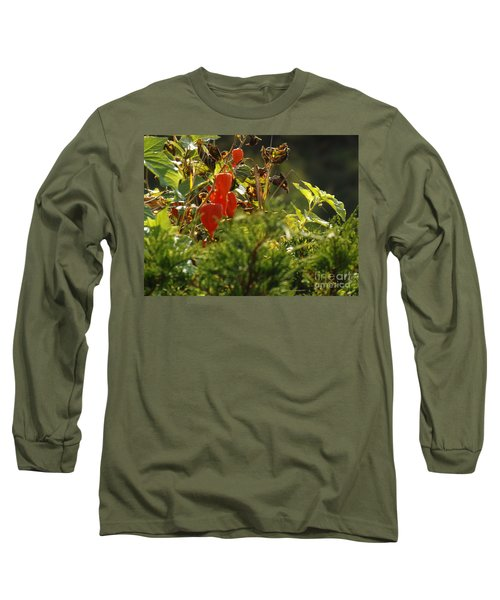 Long Sleeve T-Shirt featuring the photograph Lantern Plant by Brenda Brown