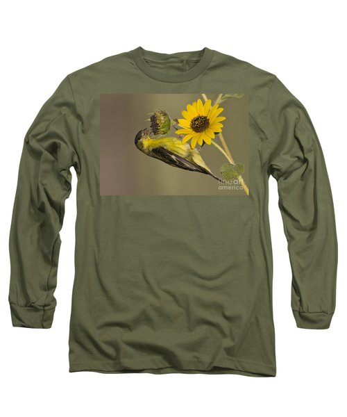 Lesser Goldfinch On Sunflower Long Sleeve T-Shirt by Bryan Keil