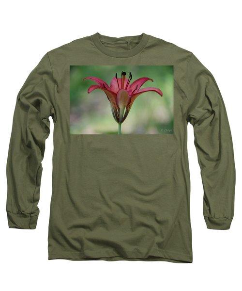 Lillium Philadelphicum Long Sleeve T-Shirt
