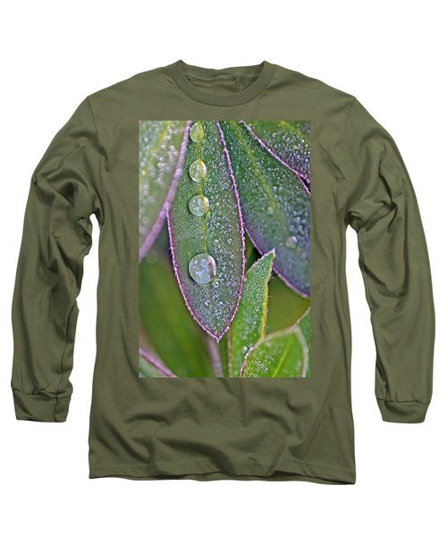 Lupin Leaves And Waterdrops Long Sleeve T-Shirt