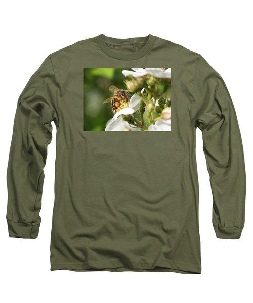 Mad Honeybee Long Sleeve T-Shirt by Lucinda VanVleck