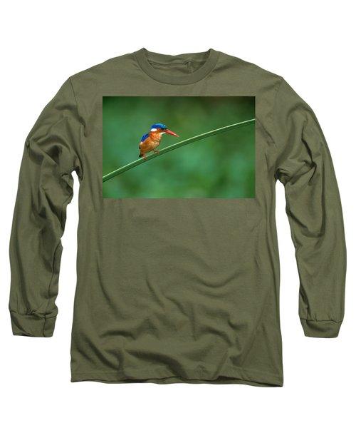 Malachite Kingfisher Tanzania Africa Long Sleeve T-Shirt