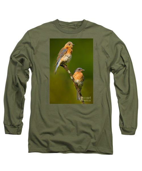 Male And Female Bluebirds Long Sleeve T-Shirt by Jerry Fornarotto
