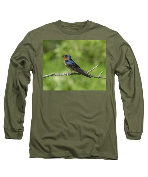 Male Barn Swallow Hirundo Rustica Dsb262 Long Sleeve T-Shirt
