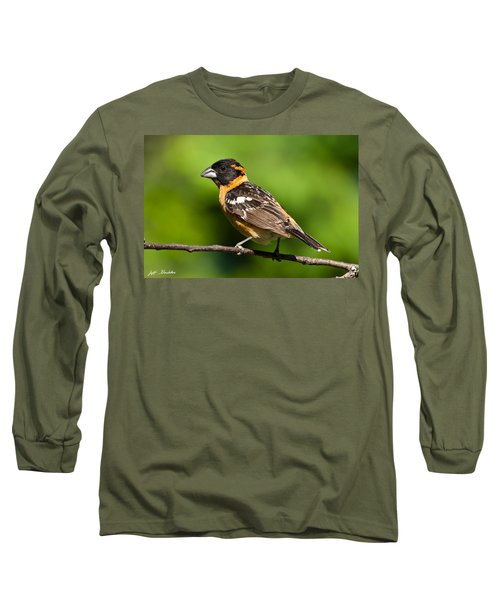 Male Black Headed Grosbeak In A Tree Long Sleeve T-Shirt