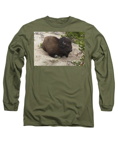 Long Sleeve T-Shirt featuring the photograph Male Buffalo At Hot Springs by Belinda Greb