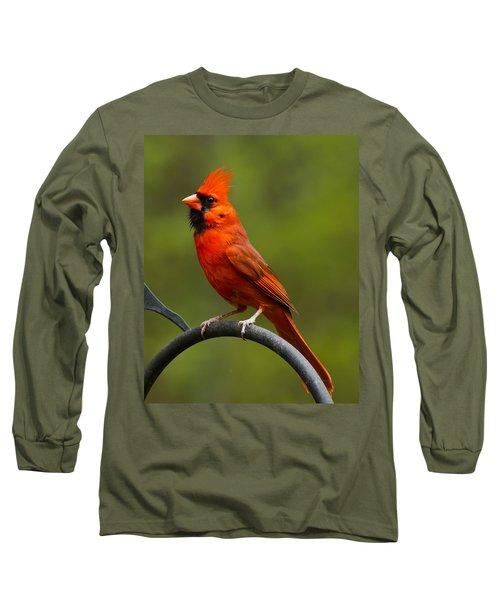Long Sleeve T-Shirt featuring the photograph Male Cardinal by Robert L Jackson