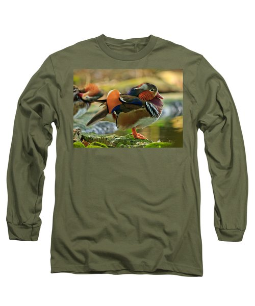 Long Sleeve T-Shirt featuring the photograph Male Mandarin Duck On A Rock by Eti Reid