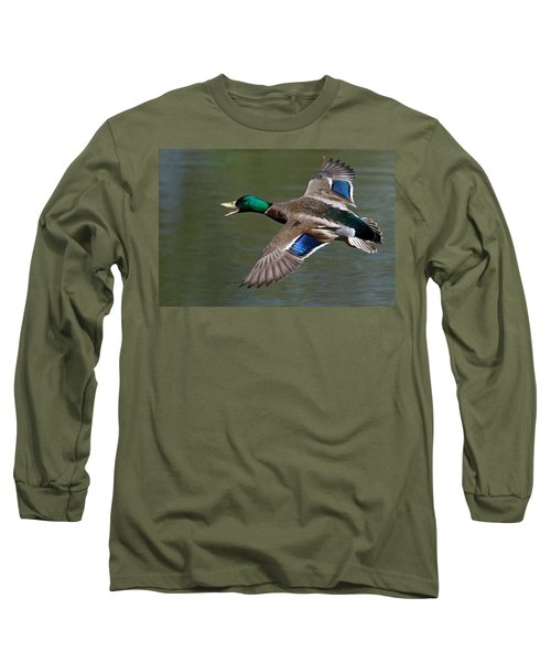 Long Sleeve T-Shirt featuring the photograph Mallard In Flight by Jerry Gammon