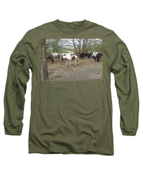 May Hill Ponies 2 Long Sleeve T-Shirt