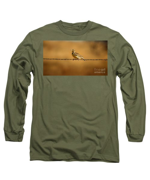 Meadowlark And Barbed Wire Long Sleeve T-Shirt by Robert Frederick