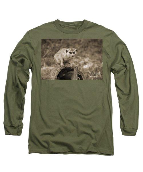Meerkat On A Log Long Sleeve T-Shirt by Douglas Barnard
