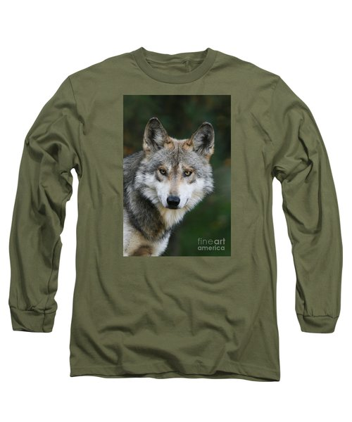 Mexican Wolf #3 Long Sleeve T-Shirt