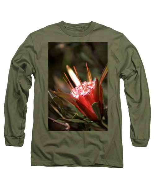 Mountain Devil Long Sleeve T-Shirt by Miroslava Jurcik
