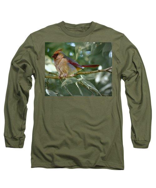 Mrs. Cardinal Long Sleeve T-Shirt