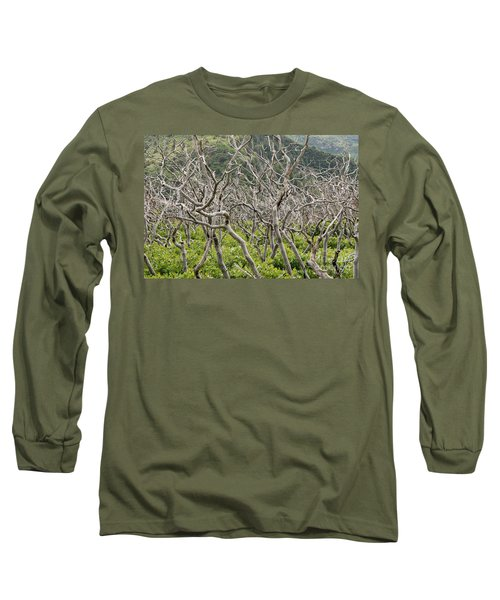 Naked Ladies Dancing Long Sleeve T-Shirt by Mary Carol Story