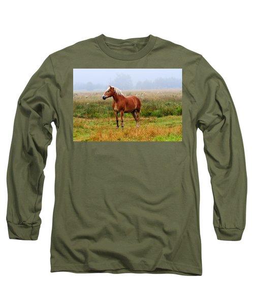 New Brunswick Horse Long Sleeve T-Shirt
