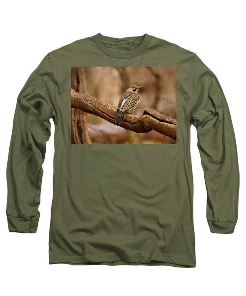 Northern Flicker II Long Sleeve T-Shirt
