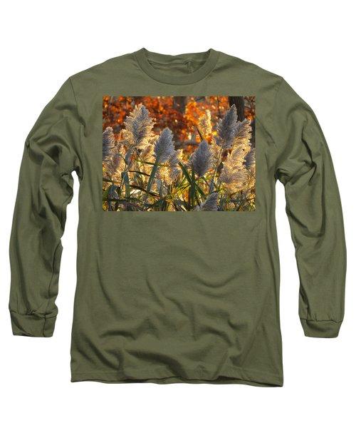 November Lights Long Sleeve T-Shirt by Dianne Cowen