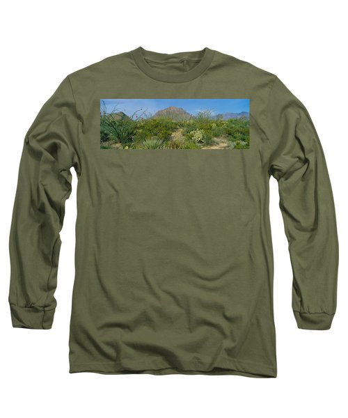 Ocotillo Plants In A Park, Big Bend Long Sleeve T-Shirt