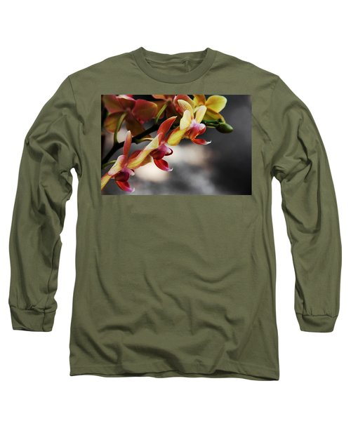 On Display Long Sleeve T-Shirt by Greg Allore