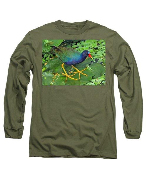 Purple Gallinule Feet Long Sleeve T-Shirt