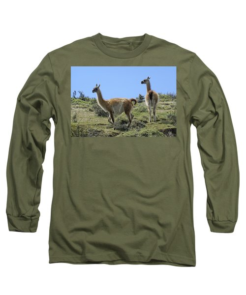 Patagonian Guanacos Long Sleeve T-Shirt by Michele Burgess