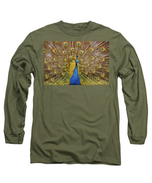 Peacock Courting Long Sleeve T-Shirt by Charles Beeler