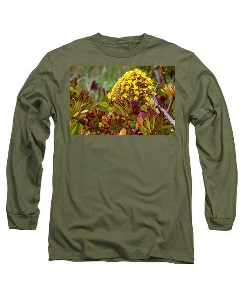 Petal Dome Long Sleeve T-Shirt by Melinda Ledsome
