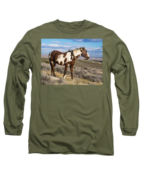 Picasso Of Sand Wash Basin Long Sleeve T-Shirt