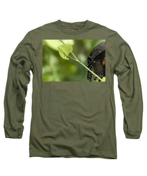 Long Sleeve T-Shirt featuring the photograph Pipevine Swallowtail Mother With Eggs by Meg Rousher